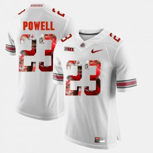Mens Pictorial Fashion Ohio State Buckeye #23 Tyvis Powell college Jersey - White